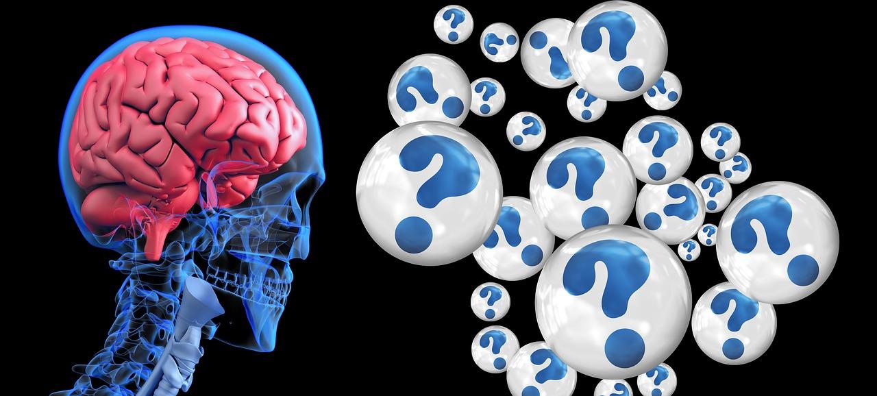 Bientôt des puces directement dans le cerveau ?